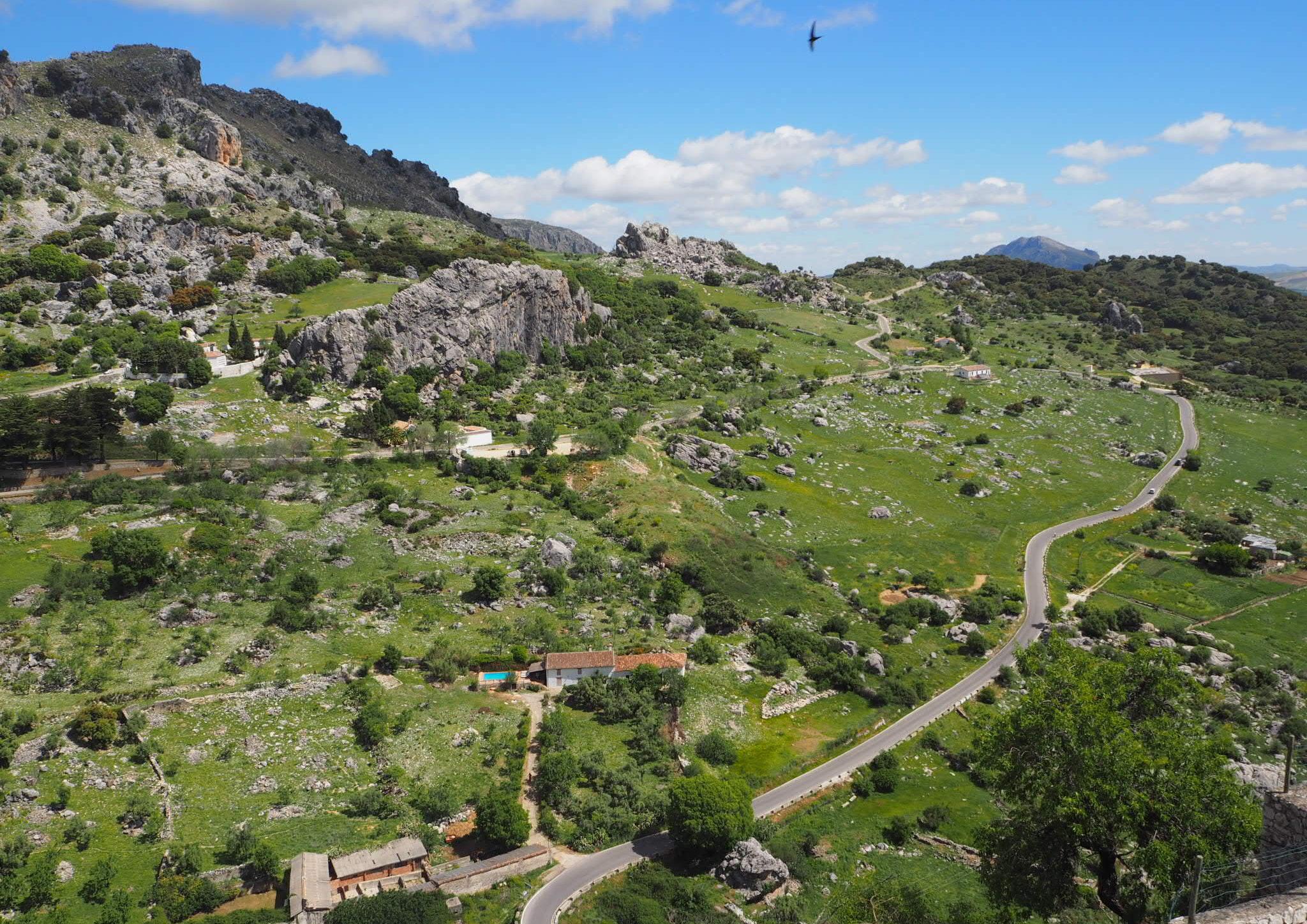 Mal keine Olivenbäume - Landschaft in der Sierra de Grazalema