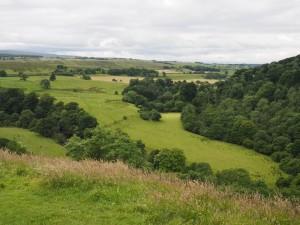 Blick vom Hadrianswall bei Birdoswald