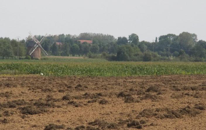 Plattes Land in der Normandie