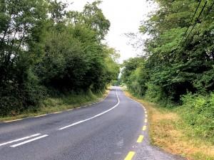 Gut ausgebaute Straße mit Hecken