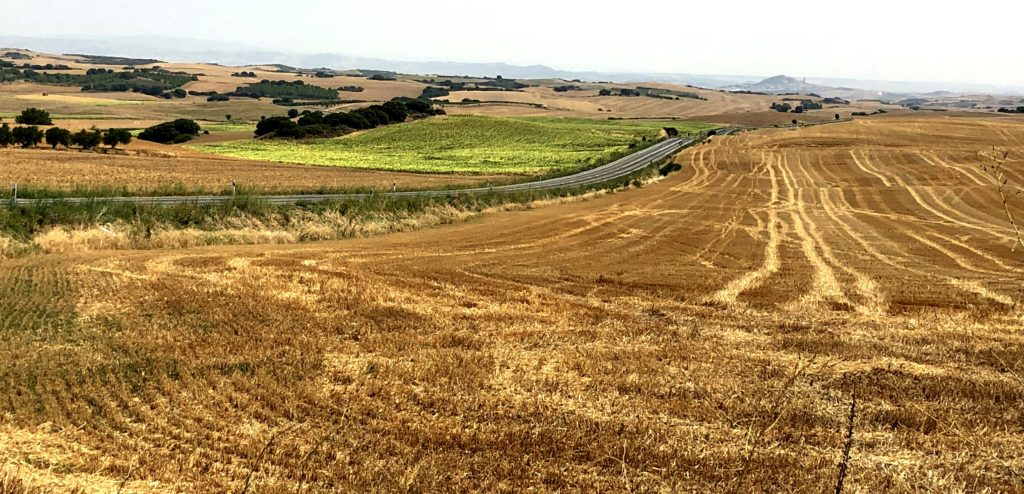 Landwirtschaft nahe Estrella