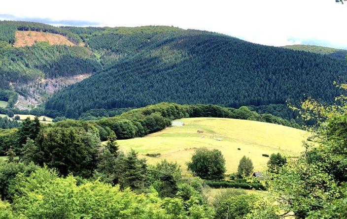 Landschaft in der nördlichen Auvergne