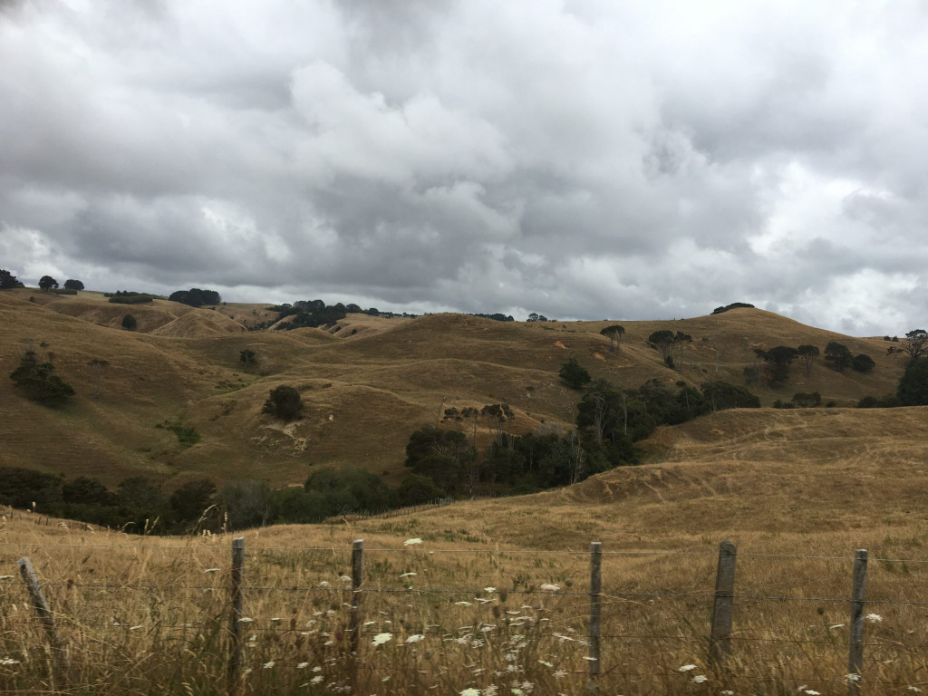 Landschaft am Highway 22