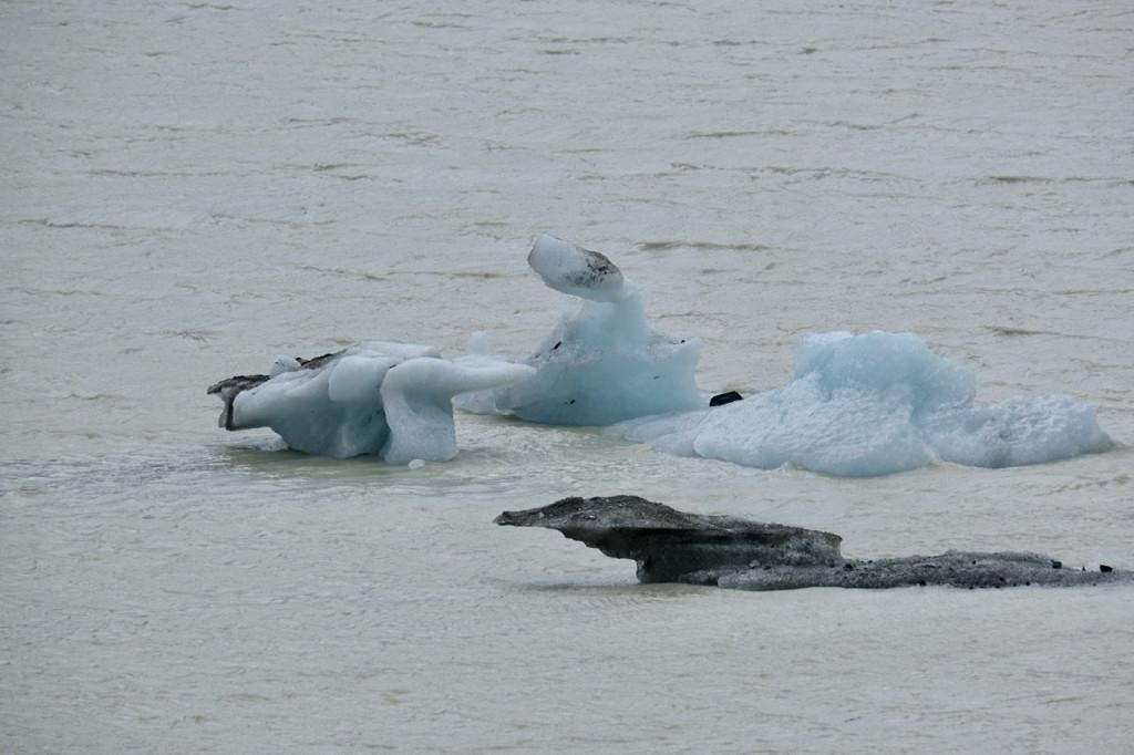 Eisbrocken vom Gletscher im Hooker Lake