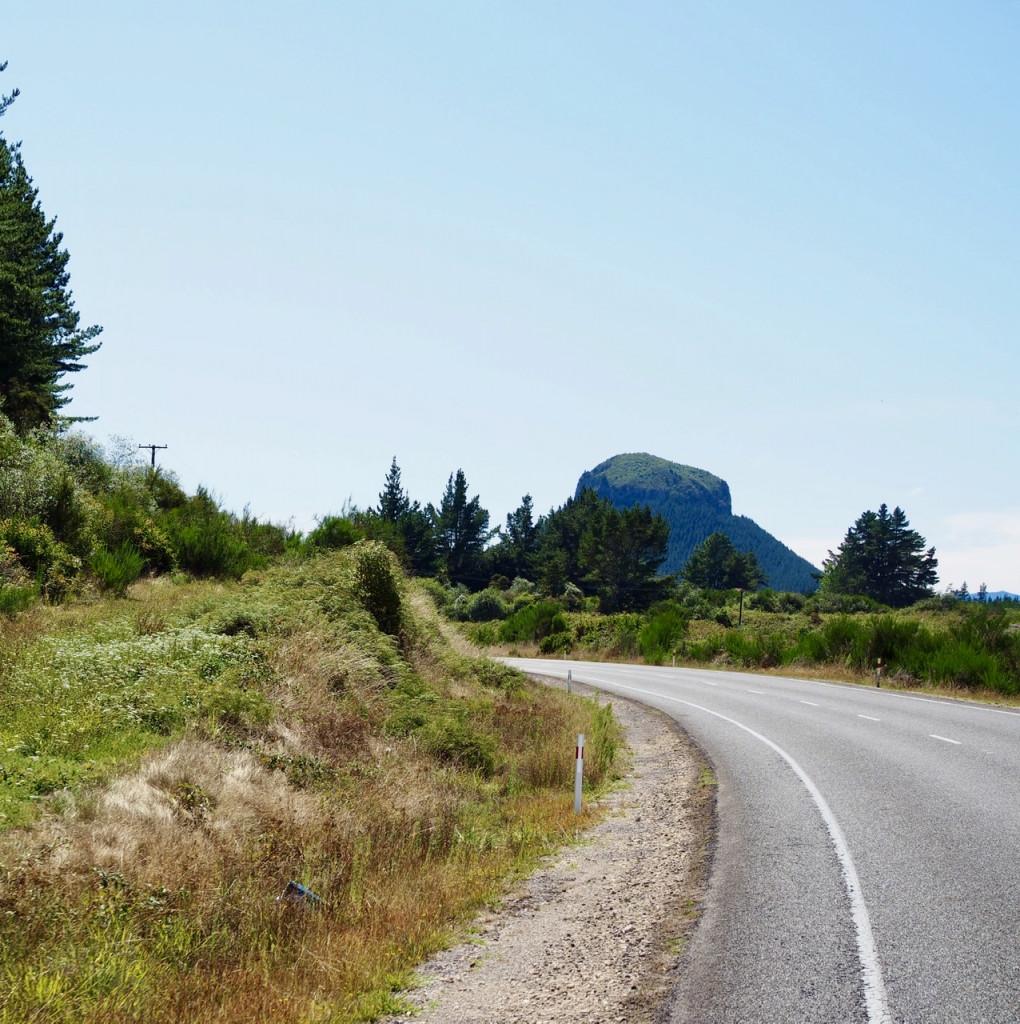 Landschaft auf der N 30, nahe Whakamaru