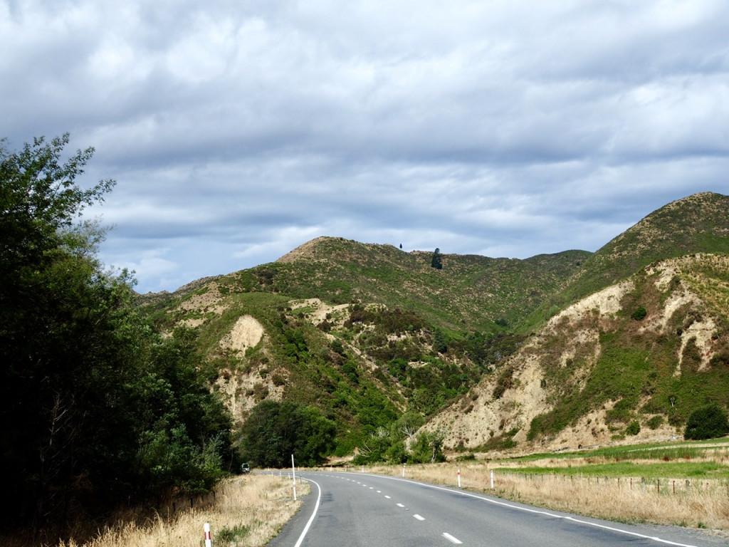 Auf dem Highway 1 vor Kaikōura