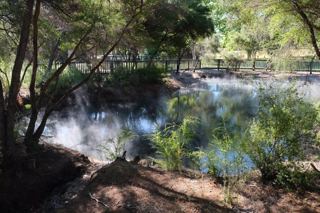 Tümpel im Kuirau Park