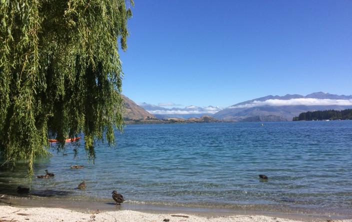 Morgenstimmung am Lake Wanaka