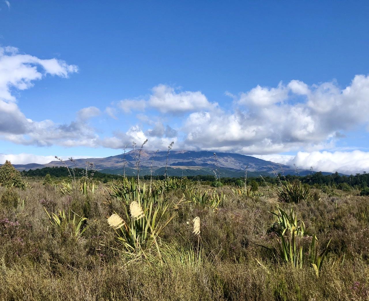 Mount Ruapehu, der Schicksalsberg