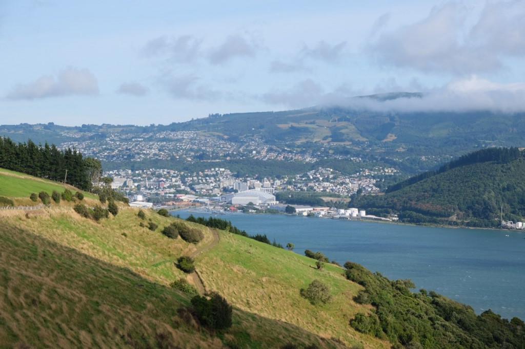 Blick auf Dunedin