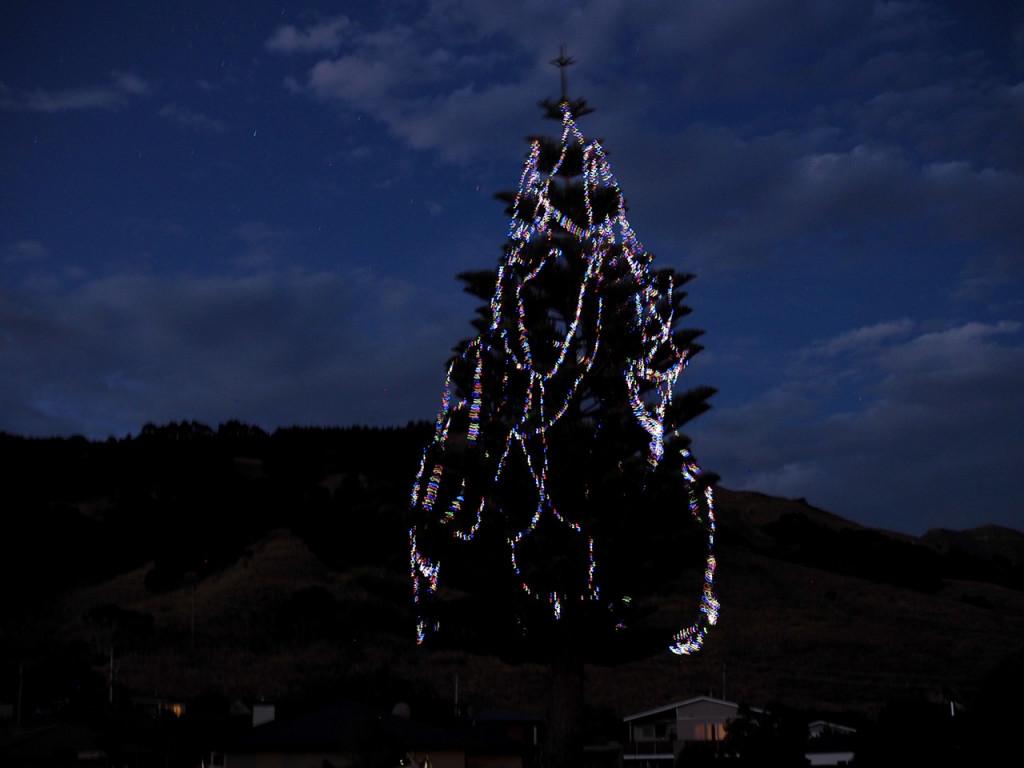 Weihnachtsbaum am CP