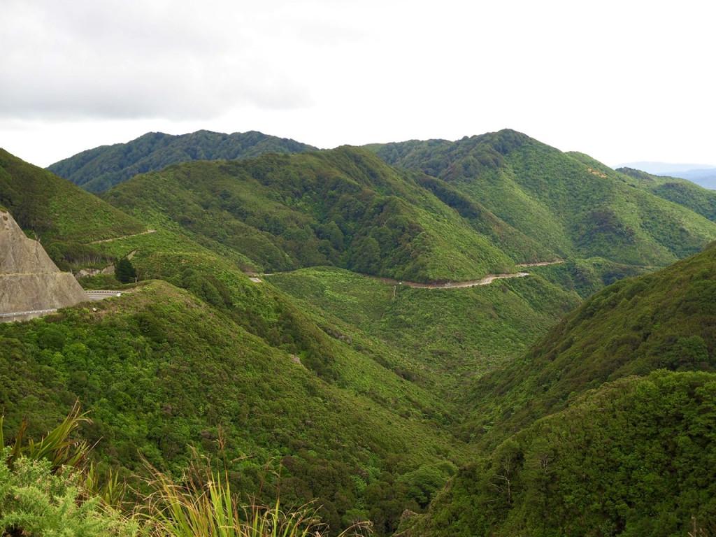 Straße zu den Putangirua Pinnacles