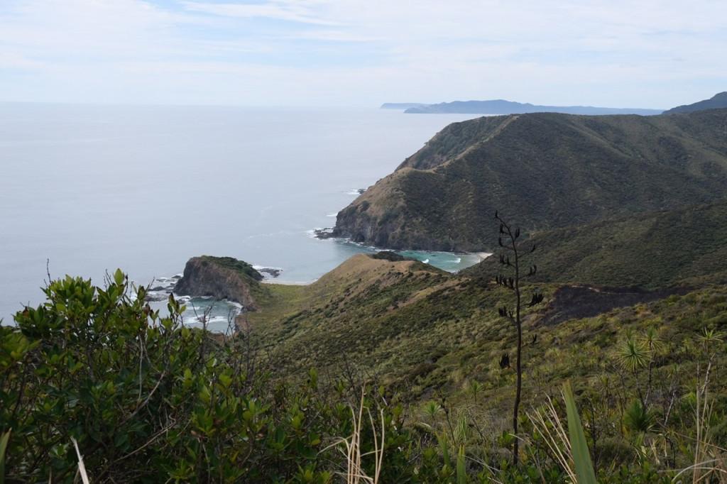 Ausblick vom Cape Reinga Pazifik