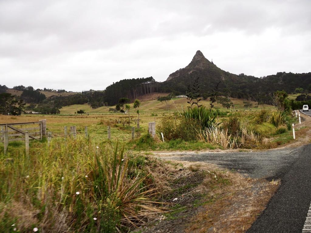 Landschaft am SH12 hinter Ruawai