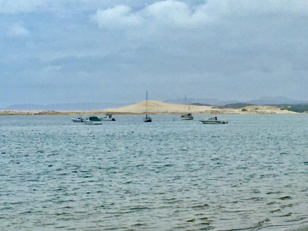 Blick über Mangawhai Harbour