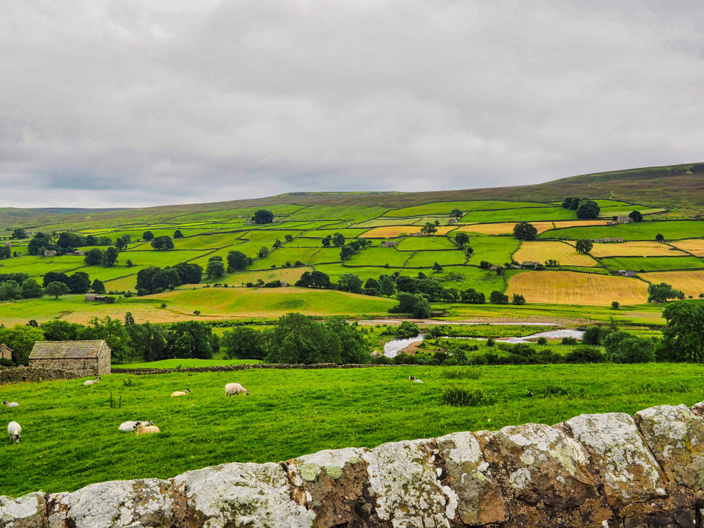 Landschaft in Nord-Yorkshire