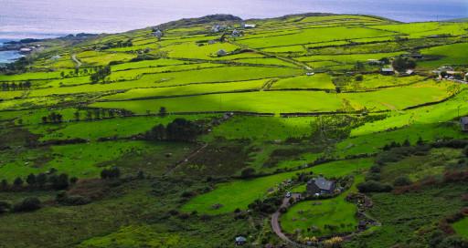 Irlands Grün am Ring of Kerry