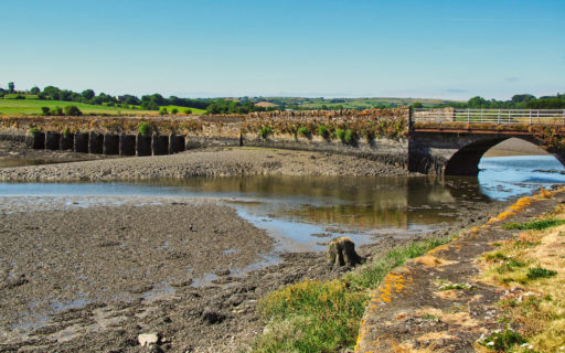 Ebbe am River Arigideen