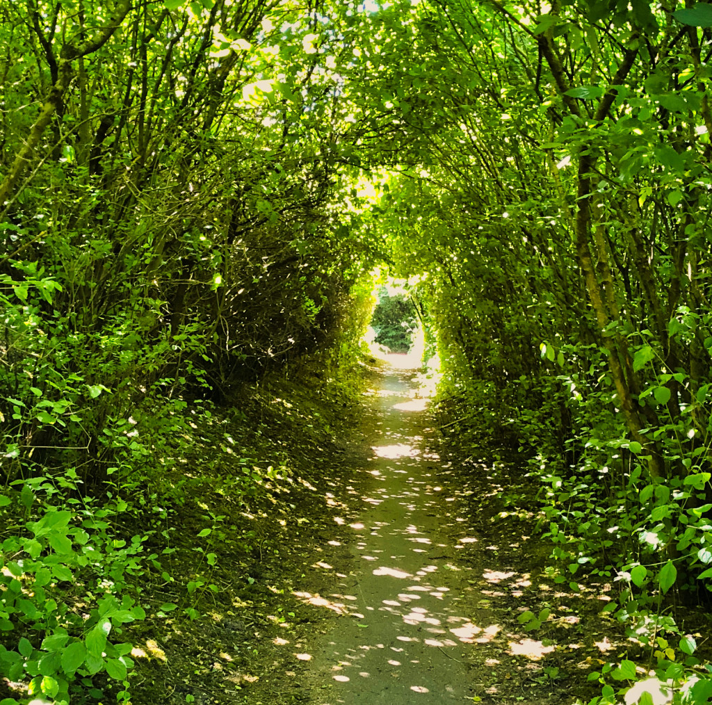 Lauschige Stelle am Themse-Wanderweg