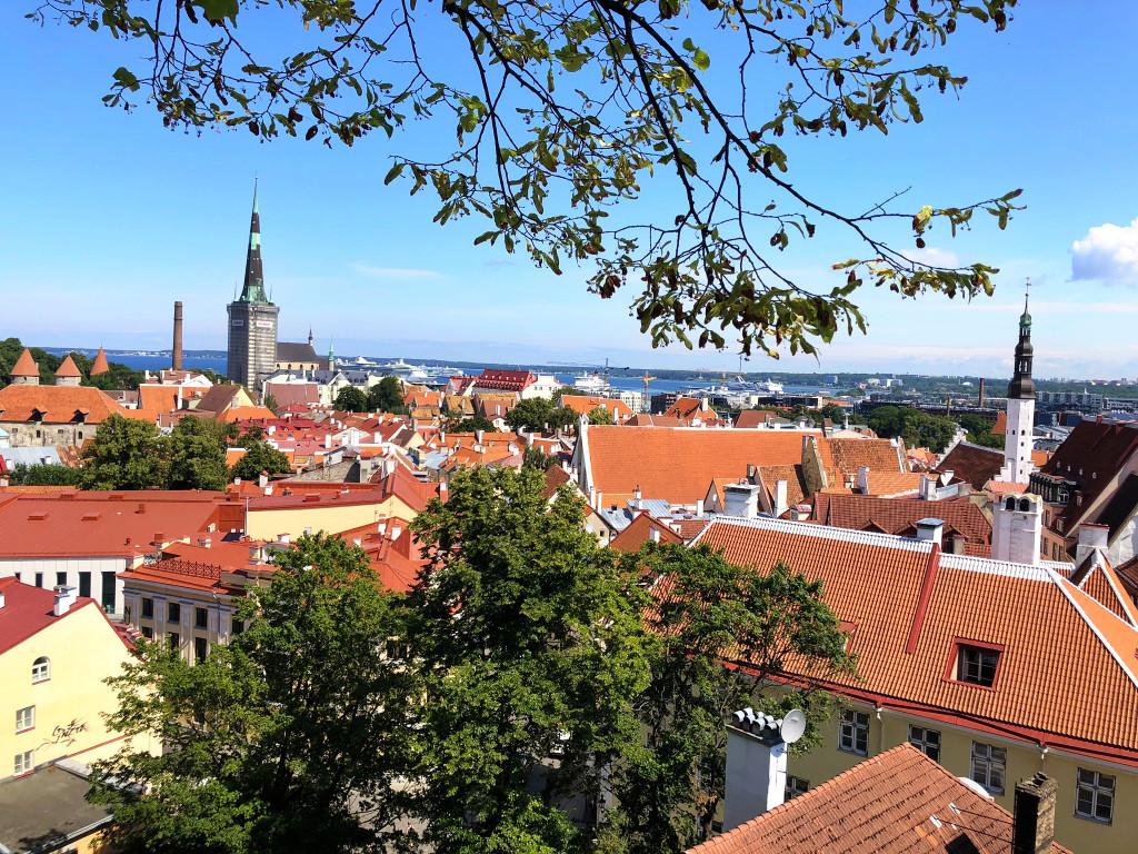 Blick über Tallinn Richtung Hafen