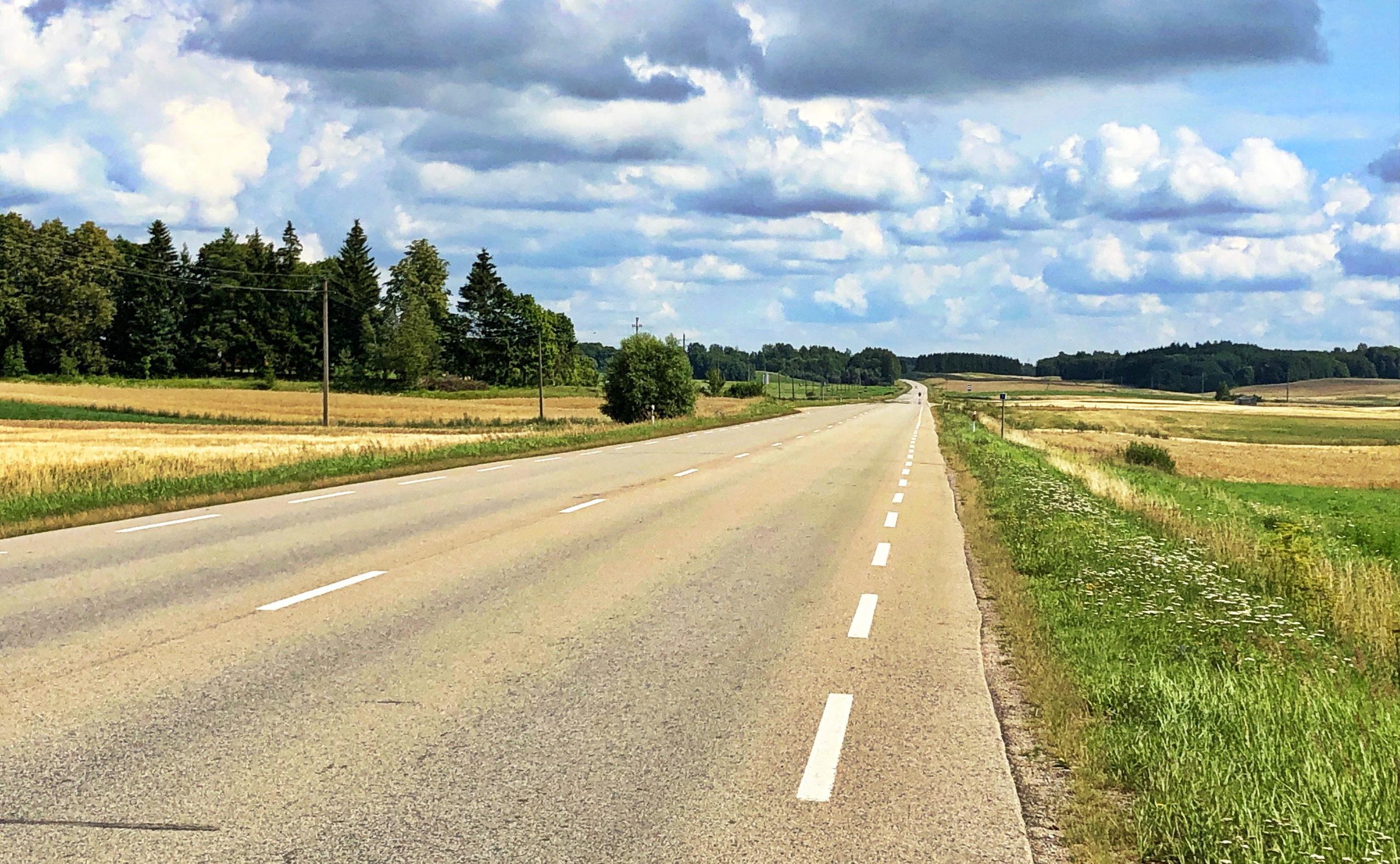Irgendwo auf der 118 in Litauen