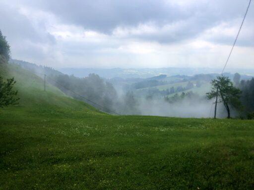 Landschaft kurz vor der Grenze Österreich/Slowenien an der L659