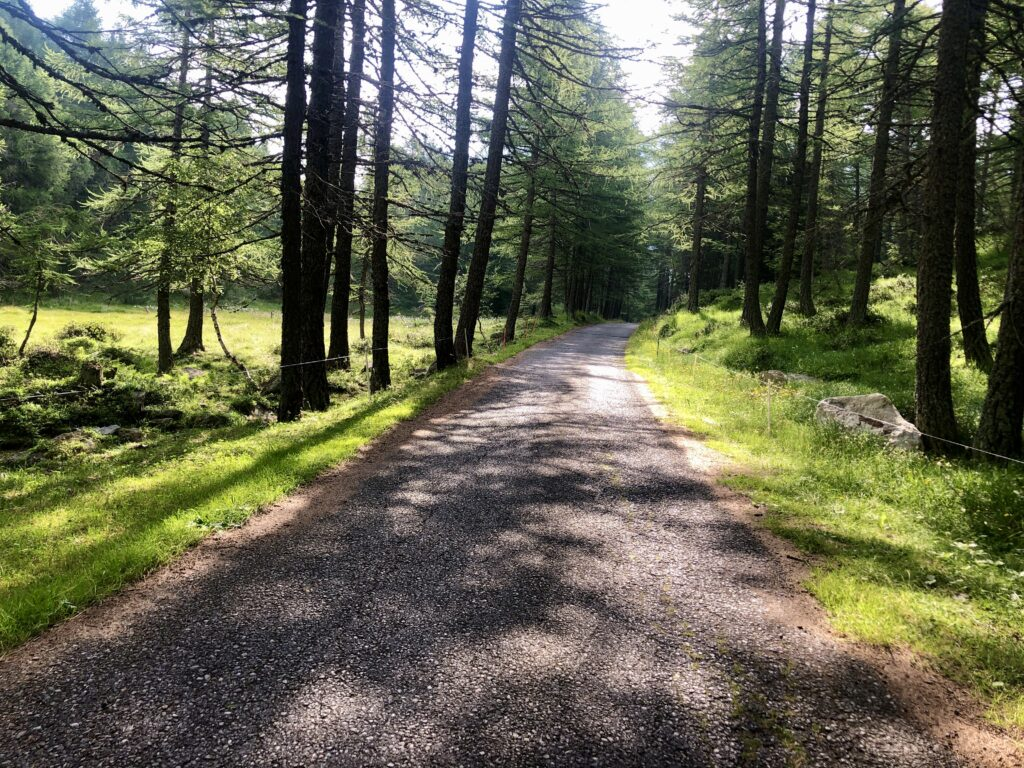 Anfahrt zum Col Carette di Val Bighera