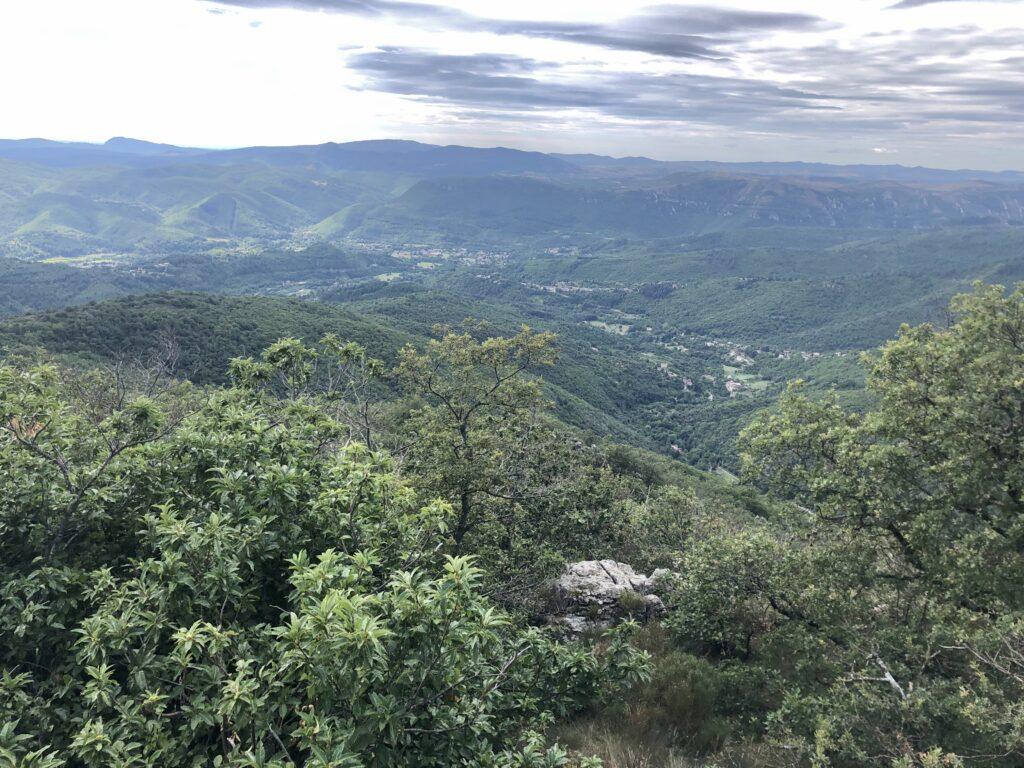 Blick von der D48 ins Tal zum Ort Le Vigan