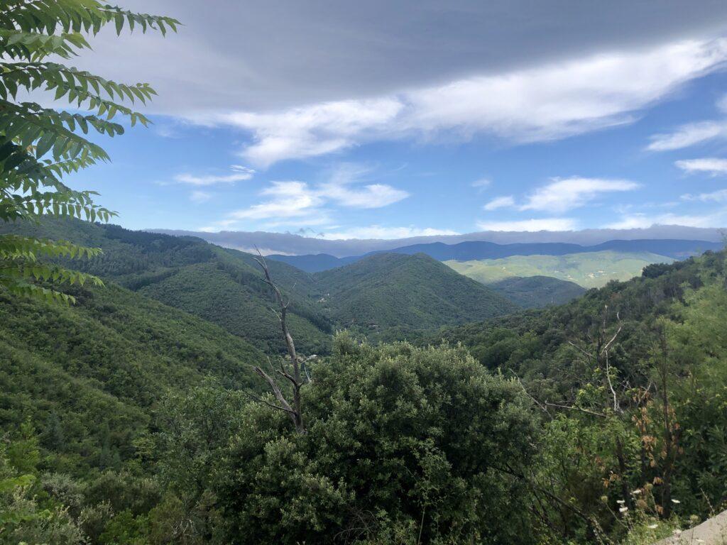 Schöne Aussicht auf der D11 bei Sumène